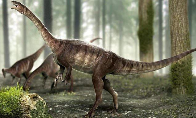 گردن درازترین دایناسوری که 225 میلیون سال پیش می زیست ، عکس