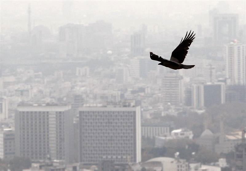 جهش 102 درصدی جرایم تخلفات ساختمانی در تهران؛ آیا تعرفه های سال 99 مانع تخلفات می گردد؟