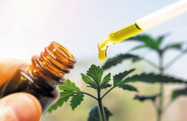 تولید نانوذراتی برای رهایش آرام عصاره گیاهان در بدن