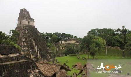 جنگل شگفت انگیز و باستانی تیکال در گواتمالا