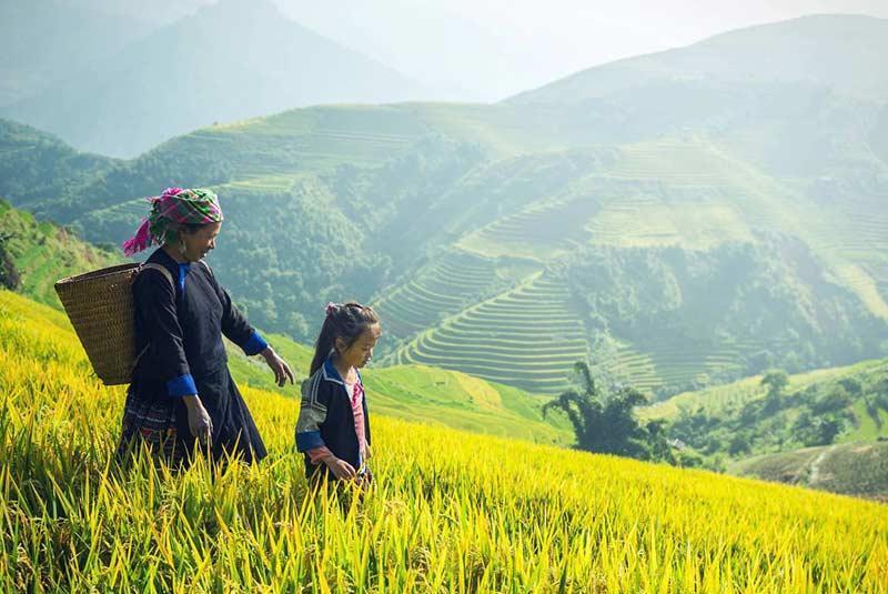 شمال تایلند با جنوب تایلند چه تفاوتی دارد؟