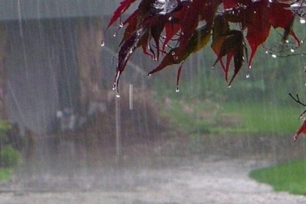 باد شدید و رگبار باران در شرق کشور