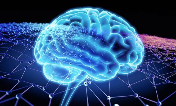 بررسی هم آوایی در شبکه نورونی مغز؛ استفاده از نتایج در علوم اعصاب